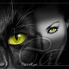 yellow_eye